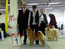 CACIB dog show Baltic Triumph 2013