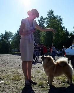 Letty Shine Amelia Show Girl- Best Puppy